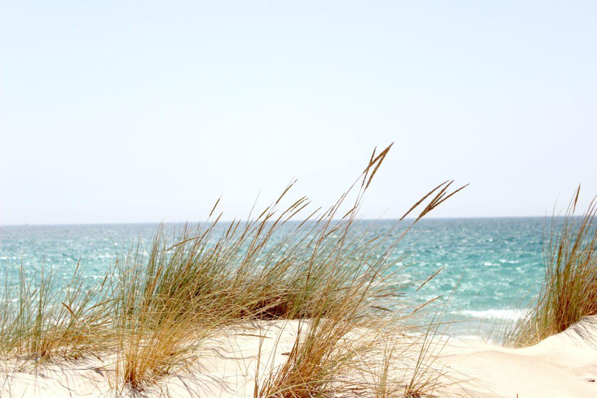 5 Semestertips i Sverige för en perfekt staycation eller hemester